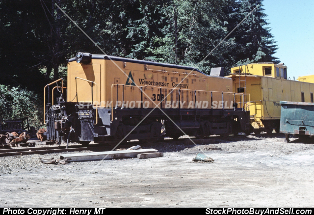 Imaginairie com - Weyerhaeuser Company 308 Train - Stock Photo
