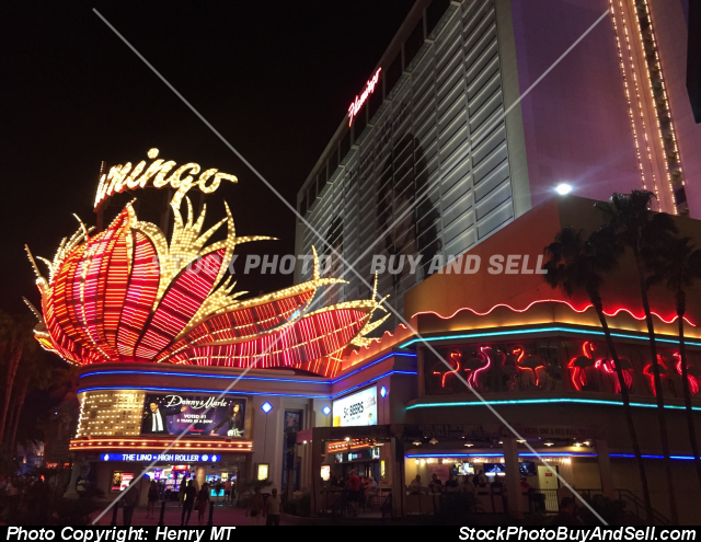 Flamingo Casino Las Vegas Strip night view