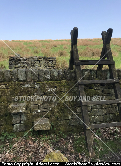Stock photo - a nice walk through the countryside coming across an old ladder to get across the wall into a beautiful green field
